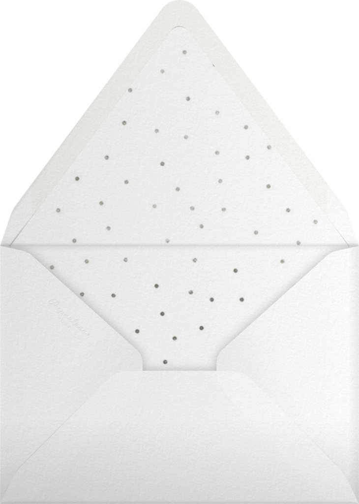 Snow Pine Valley (Tall) - Silver - Paperless Post - Envelope