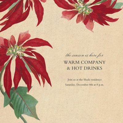 Euphorbia - John Derian