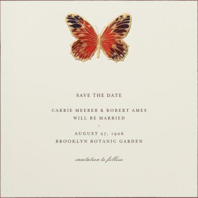 Hand Painted Butterfly - Bernard Maisner