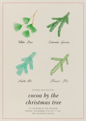 Conifer Classification - Paperless Post