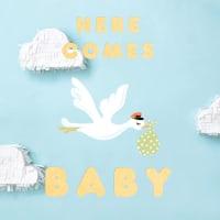 Online Baby Shower Invitations Send Online Instantly Rsvp Tracking